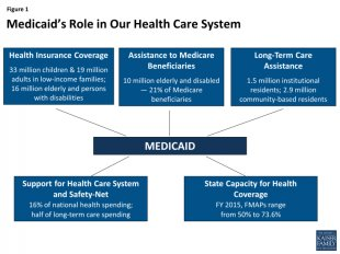 Figure 1: Medicaid's Role within our Health Care program